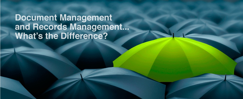 document management records management difference